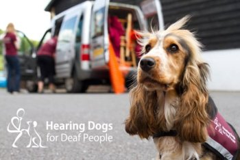 Nidagravel used at Hearing Dogs For Deaf People new Visitor Center